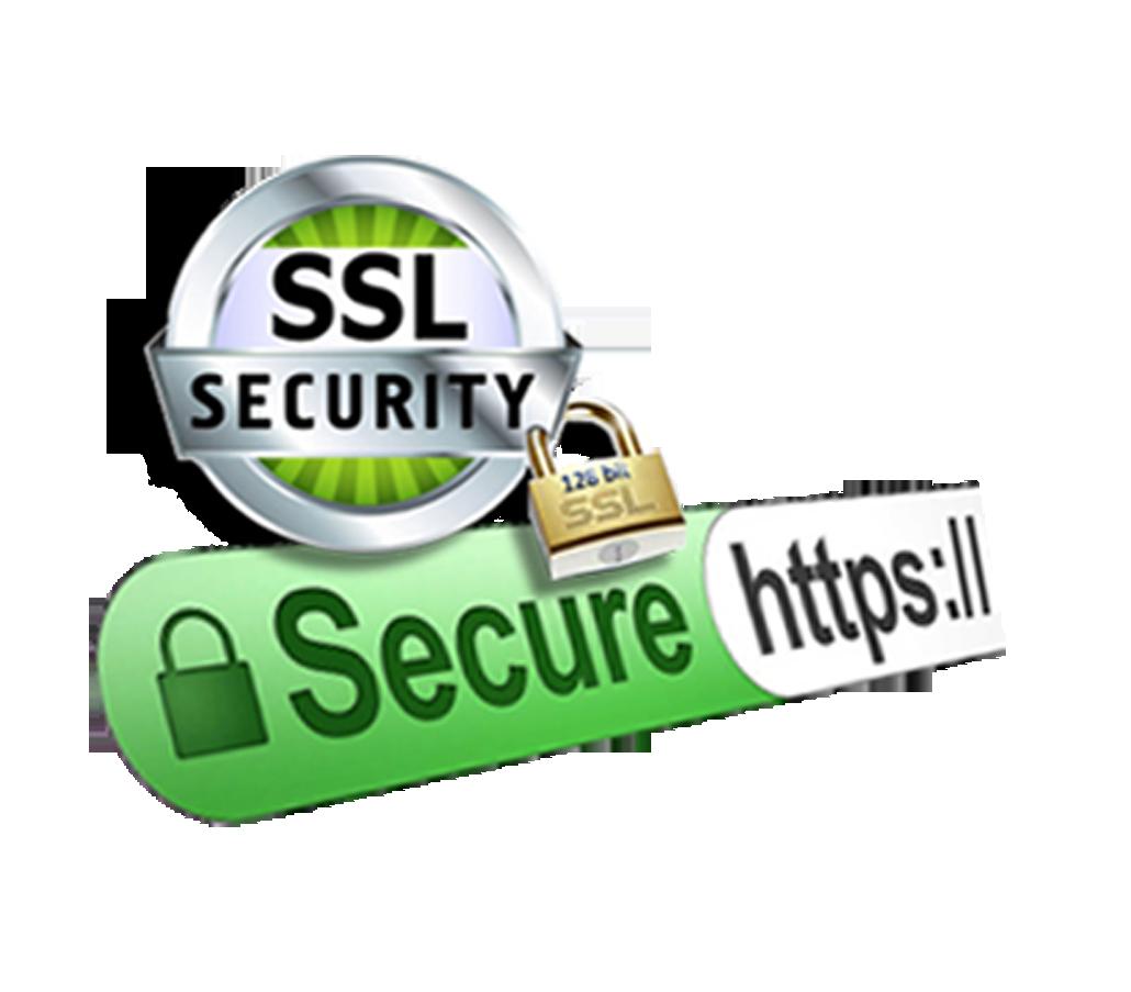 Ssl Certificate Services Best Ssl Certificate Providers In India